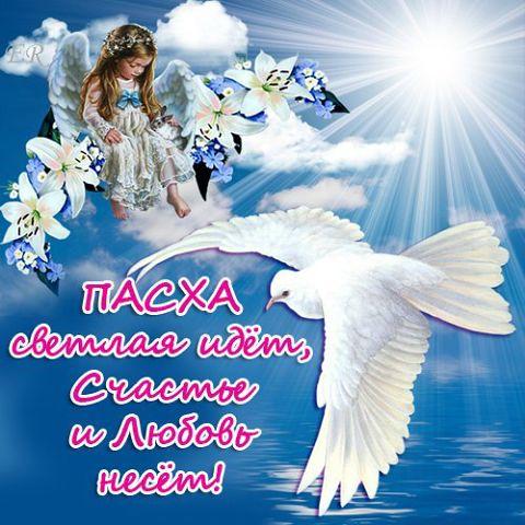 3768849_Pasha_nast_id (480x480, 52Kb)