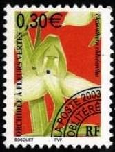 Орхидея фр 1 (167x219, 23Kb)