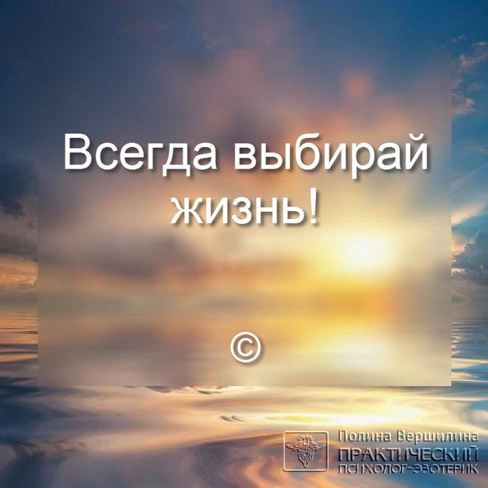 5681176_ (700x700, 103Kb)