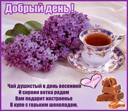 Добрый день !    Чай душистый в день весенний И сирени ветка рядом Вам подарит настроенье В купе с горьким шоколадом. (450x390, 167Kb)