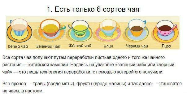 чай1 (604x316, 35Kb)