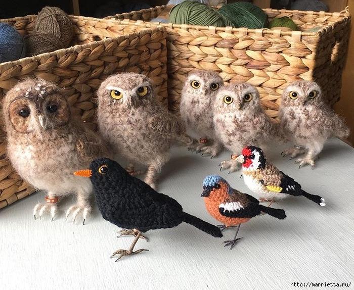 Птичий двор Jose Heroys. Вязаные птички, необыкновенной красоты (8) (700x574, 367Kb)