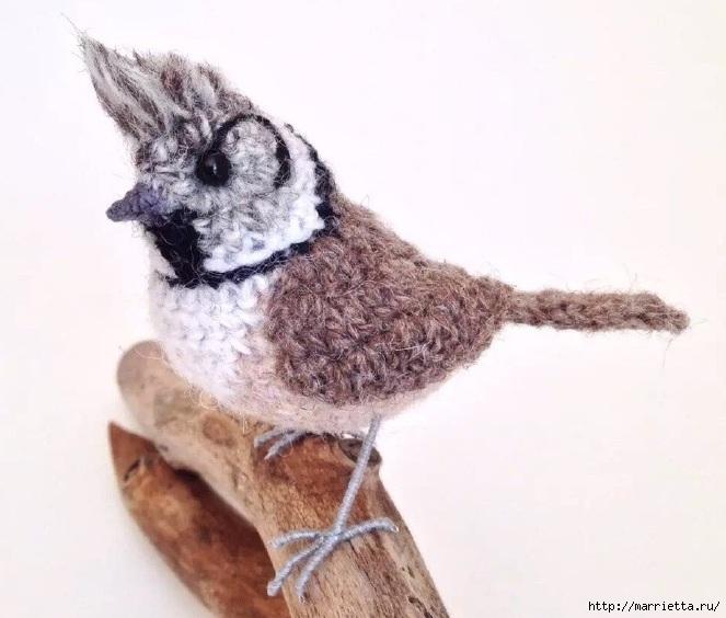 Птичий двор Jose Heroys. Вязаные птички, необыкновенной красоты (18) (663x564, 167Kb)