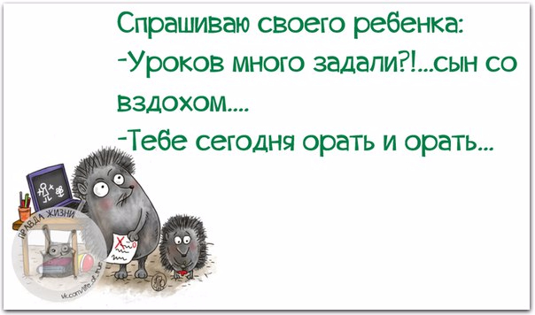 1443460912_frazki-10 (604x356, 136Kb)