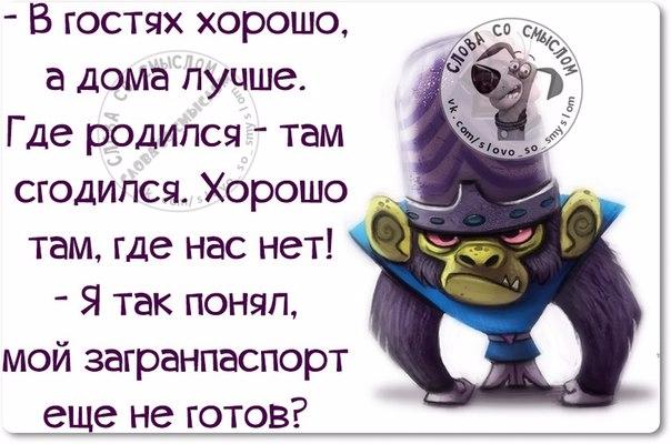 1443460956_frazki-7 (604x400, 227Kb)