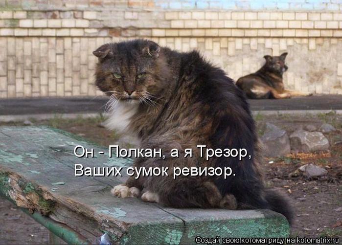 kotomatritsa_De (700x501, 367Kb)