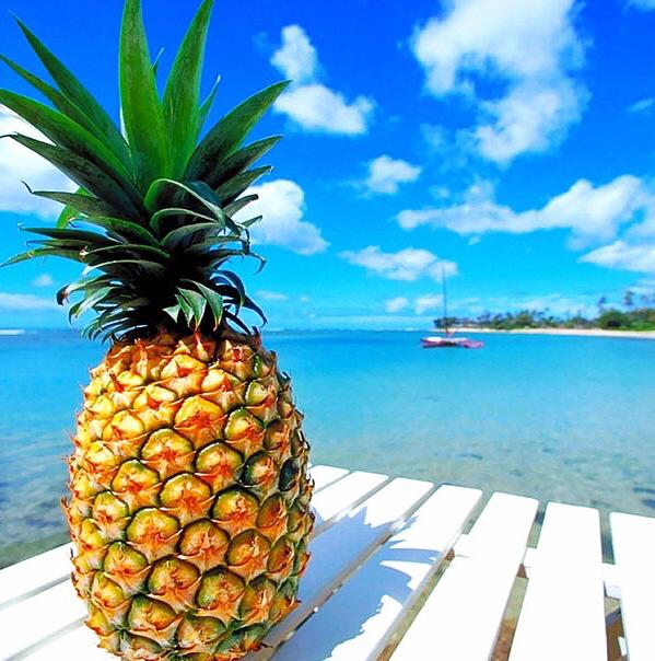 aloha-fruit-island-pineapple-Favim.com-2610189 (599x604, 413Kb)