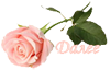 4897960_0_f3d54_d6430f1d_orig (100x64, 13Kb)