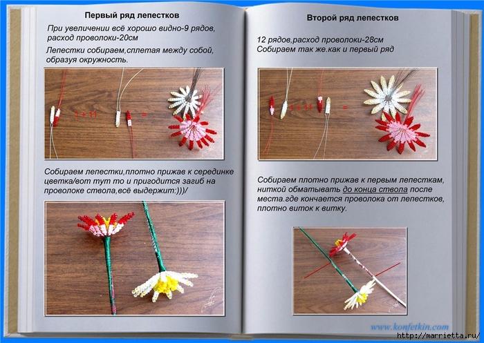 Цветы из бисера. Хризантемы (1) (700x497, 291Kb)