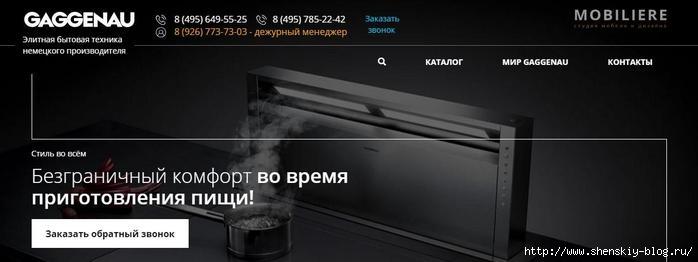 Бытовая техника Gaggenau /4121583_apap (700x262, 70Kb)