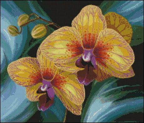 Жёлтая орхидея_А (460x395, 264Kb)