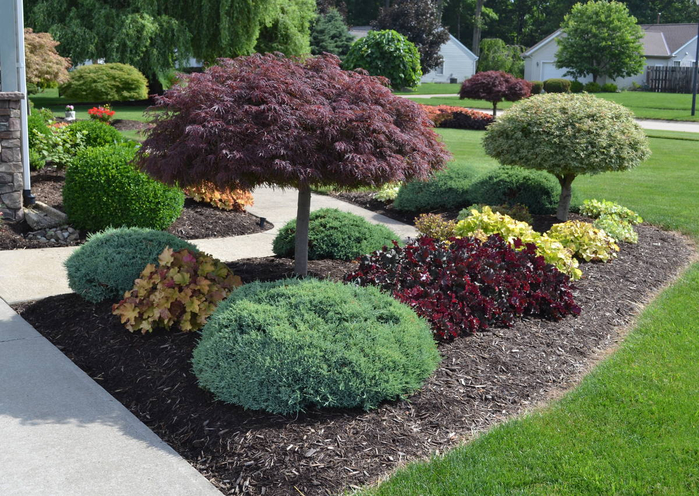 Landscaping Ideas that Work Tauntons Ideas That Work