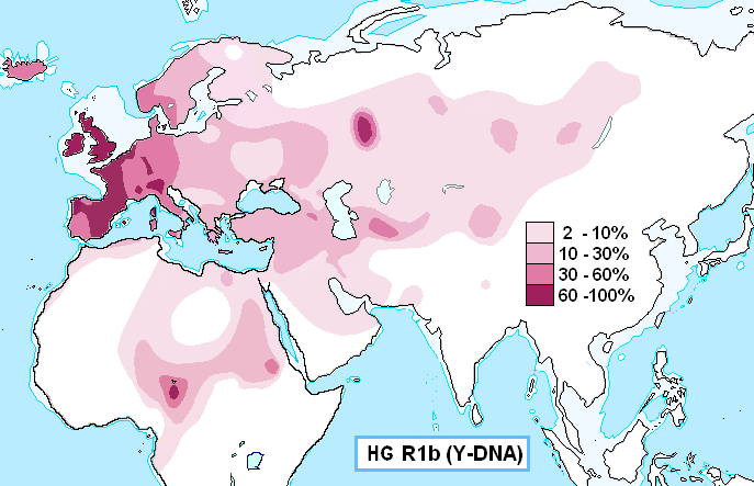 Haplogroup_R1b_(Y-DNA) (687x443, 25Kb)