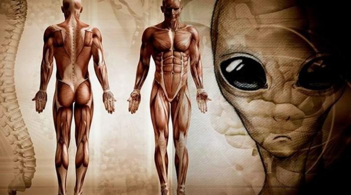 Почему мы до сих пор не встретили инопланетян? 10 главных причин