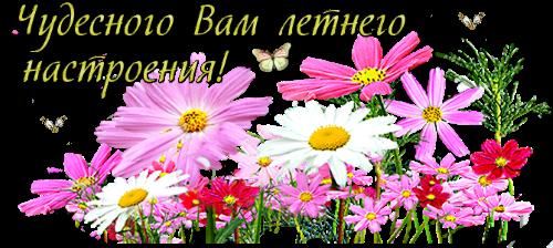 130191381_1407657174 (500x224, 225Kb)