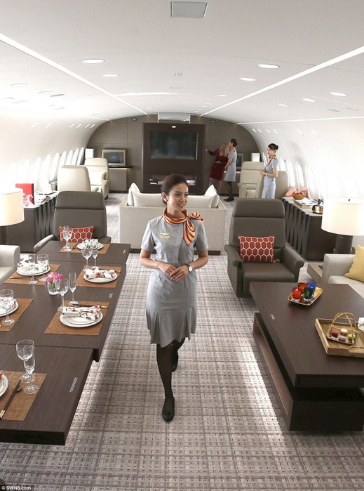 самолет вип-класса Dreamliner B787 Dreamjet 8 (519x700, 346Kb)