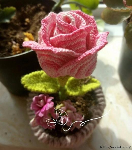 Розовая роза крючком (4) (520x590, 174Kb)