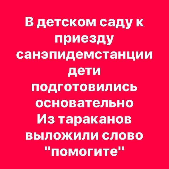 18444307_136024390277652_2234036597748137984_n (700x700, 63Kb)