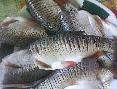 Секрет жарки рыбы без костей/3290568_image (477x363, 56Kb)