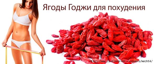 ягоды годжи для похудения/6210208_yagodi_godji_dlya_pohydeniya (588x245, 131Kb)
