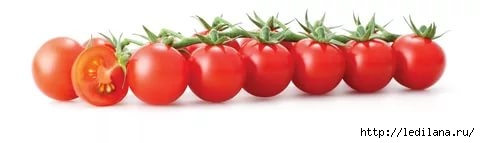 3925311_cherri_tomati (480x143, 29Kb)