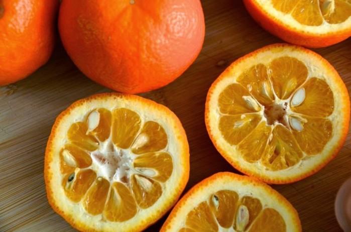 2749438_Gorkii_apelsin_pohydenie (700x462, 77Kb)