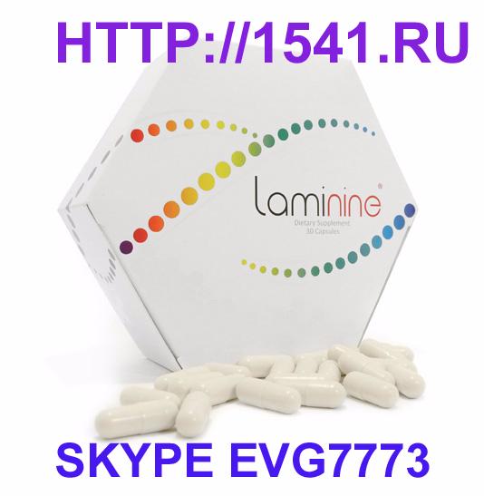laminine3 SKYPE (534x547, 147Kb)