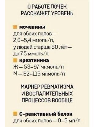 MZXHdHI2o9s (307x415, 100Kb)