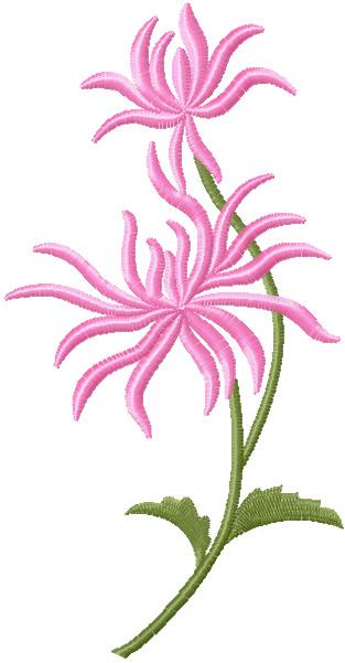 chrysanthemum-free-embroidery-design (313x601, 52Kb)