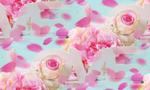 Превью heart-love-roses-pastel-pink-romantic-rozy-serdechki-petal-5 (700x420, 282Kb)