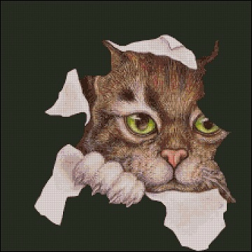 Любопытный кот_А (360x360, 113Kb)