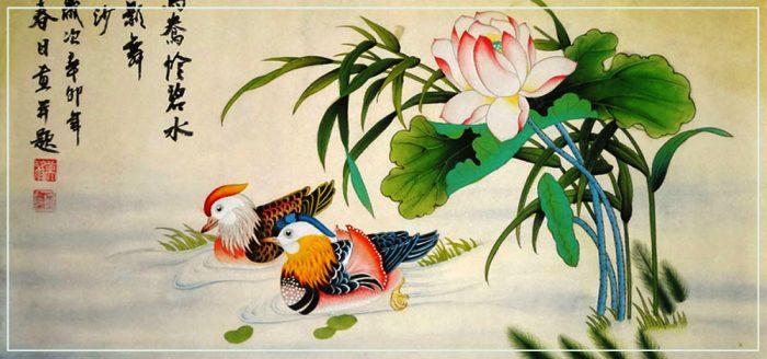 mandarin-duck-fen-700x328 (700x328, 49Kb)