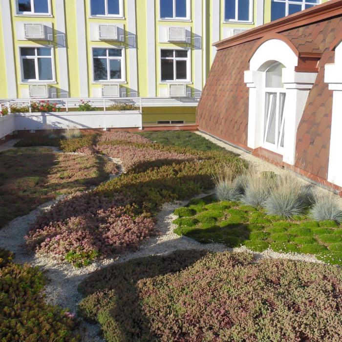 зеленые крыши (700x700, 612Kb)