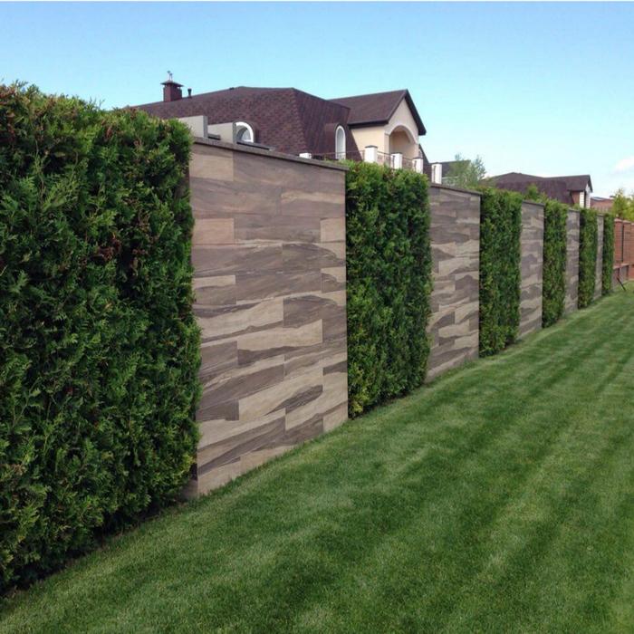 стена (700x700, 530Kb)