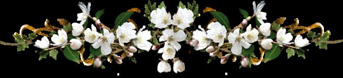 4059776_razdeliteli_vesennie (699x159, 154Kb)