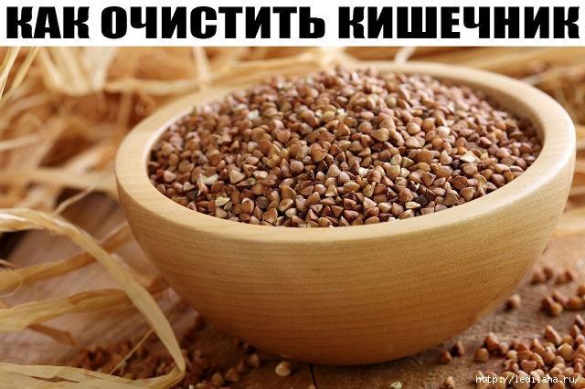 3925311_KAK_OChISTIT_KIShEChNIK_grechka (640x426, 175Kb)