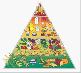 История появления некоторых продуктов питания