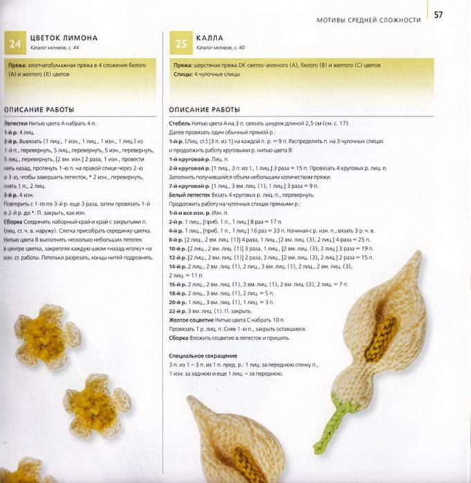 цветы крючком и спицами/3071837_054 (681x700, 134Kb)