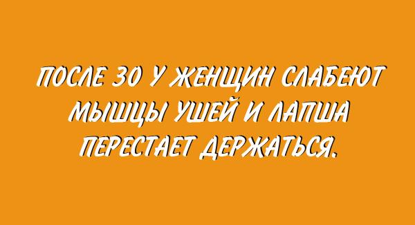 original (2) (600x325, 120Kb)