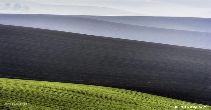 South-Moravian-Region-26-8 (700x365, 165Kb)