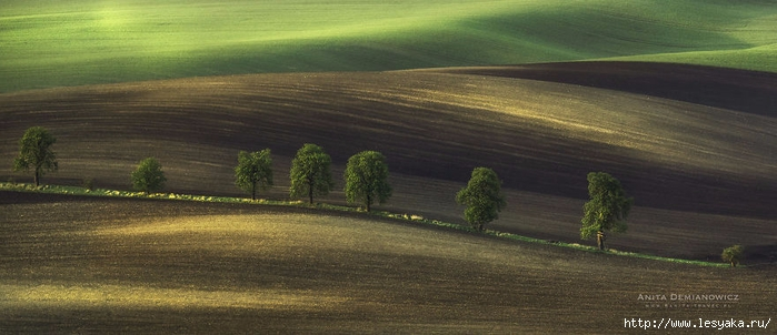 South-Moravian-Region-26-14 (700x302, 172Kb)