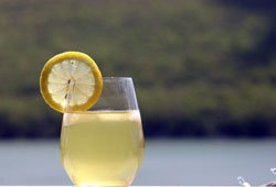 3183520_prigotovim_fermentirovannii_domashnii_limonad (250x170, 7Kb)