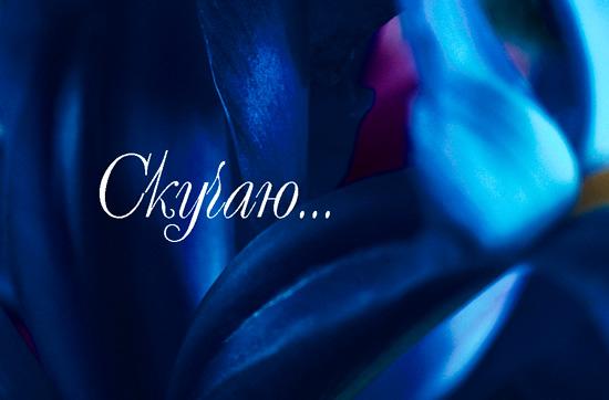 6215042_1352562396_kartinki_skuchayu_krasivie_434924 (550x362, 56Kb)