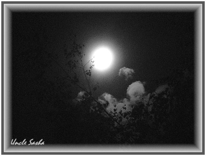 Moon (656x496, 87Kb)