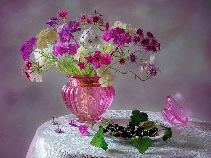 Красивые натюрмортов цветы