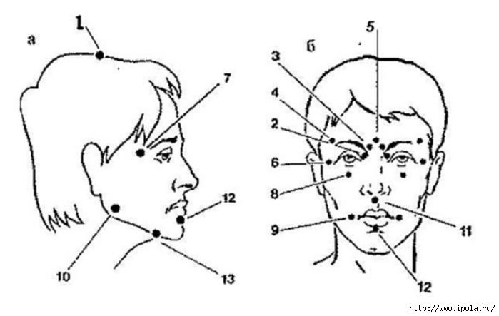 "alt=""Техника точечного массажа ШИАЦУ на лице.""/2835299_Tehnika_tochechnogo_massaja_ShIACY_na_lice (700x443, 91Kb)"