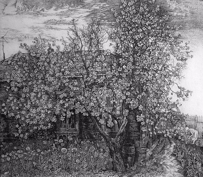 34 Яблоня цветет (650x565, 449Kb)