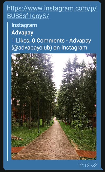 Сохраняем фото и видео из Instagram на смартфоне с помощью Telegram