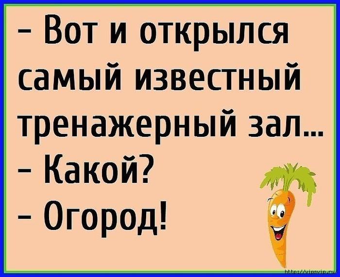 5745884_ogorod_trenajer (700x571, 178Kb)