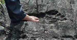 Гигантский след из Пиньяна: реальный великан или подделка?